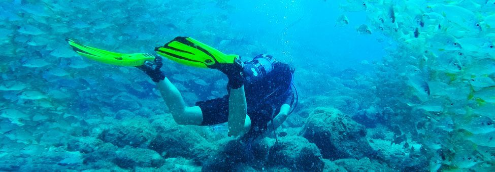 DIVING E SNORKELING A TENERIFE
