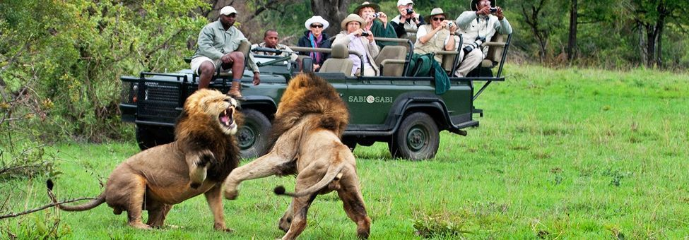 SAFARI IN SUD AFRICA