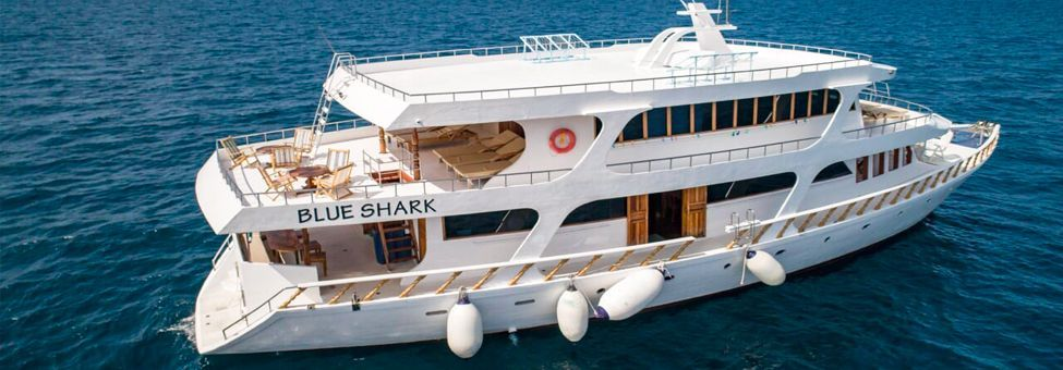 BLUE SHARK BOAT