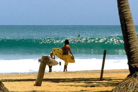Arugam Bay Surf Trip con tour avventura